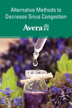 The Top 12 Essential Oils for Eczema (Backed by Studies) – Lavender Essential Oils For Thyroid, Diluting Essential Oils, Best Essential Oils, Oils For Eczema, Aromatherapy Recipes, Aromatherapy Benefits, Seasonal Allergies, Best Oils, Tips & Tricks