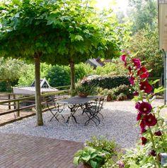 . Read More at: space-gardens.blogspot.com