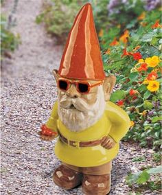 The Gnome, Summer Gnome, Garden Gnome with Bird and Sunglasses | Solutions