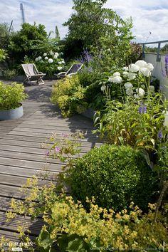 Création d'une terrasse champêtre, Xavier De Chirac - Côté Maison