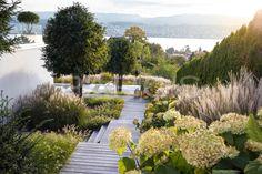 Villengarten mit üppiger Bepflanzung - PARC'S Gartengestaltung #gräser #pennisetum #miscanthus #hydrangea #hortensien