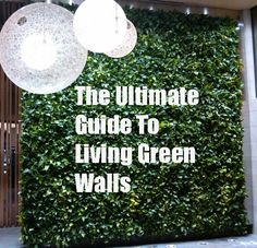 Check out this Ultimate Guide To Living Green Walls from Ambius Really Green Really Cool