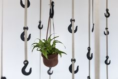 Grapple is a sustainable design solution for your home, providing an innovative alternative to coat hooks. Made from recycled grass clippings and recycled plastic, The Grapple Hook is sustainable in design and comes with linen webbing. It's flexible and affordable. The TapeGear team, who produce this product, are also responsible for organic cork and recycled textile tech sleeves. www.tapegear.com Kickstarter…