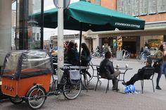Starbucks Grote Marktstraat Starbucks, Street View