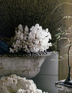 old gray urn.. beautiful decorating accessory