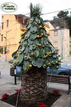 """Dal paese di Regalgioffoli un albero di Natale all'insegna della vera """"sicilianità"""""""