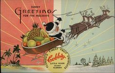 Cobbs Seminole Fruit & Preserving Company Little River Florida