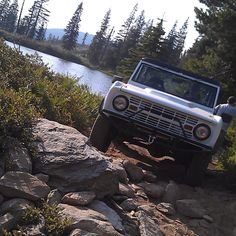 Bronco on the Rocks
