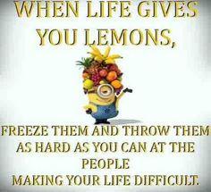 Good use of the lemons life gives you