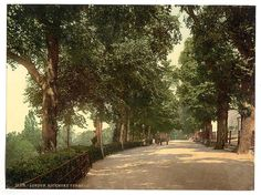 [Richmond, the terrace, England] | Library of Congress