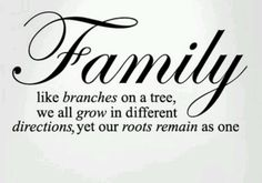 Family like branches on a tree, we all grow in different directions, yet our roots remain as one.