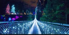 Capilano suspension bridge lit up for Christmas. North Vancouver BC