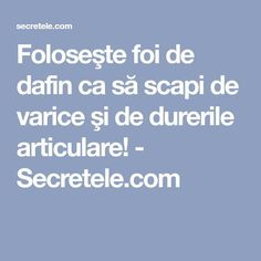 Foloseşte foi de dafin ca să scapi de varice şi de durerile articulare! - Secretele.com Gout, Salvia, Good To Know, Natural Remedies, Food And Drink, Health Fitness, Apothecary, Spider, Pandora