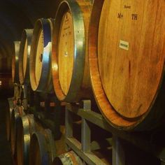 I think my is on point! Do you think I can taste my way through all of these barrels? Wine Wednesday, Barrels, Solo Travel, Wine Tasting, Wanderlust, California, Explore, Live, Instagram Posts