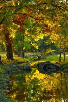 Golden Park, Craiova, Romania photo via cinda - The Voyaging! Beautiful World, Beautiful Places, Beautiful Pictures, Beautiful Park, Seen, All Nature, Autumn Nature, Green Nature, Gras
