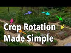 Crop Rotation Made Simple - featured on Mother Earth News: how and why to rotate your garden crops