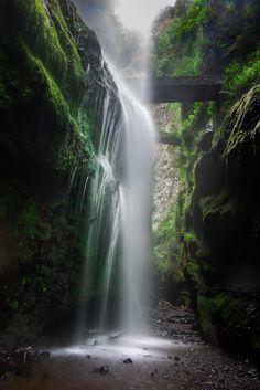 """Los Tilos . - Sendero """" camino de agua """" atravesando el salto de los Tilos . La Palma. Islas Canarias . España ."""