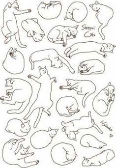 Best cats sleeping logo ideas #cats