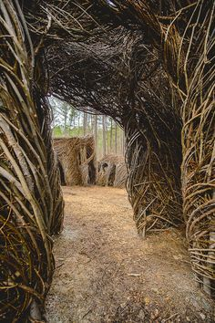 Designed by local stick sculpture artist Patrick Doughterty, Sweetgum Thicket invites you to experience a one-of-a-kind game of hide and seek.