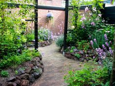 A divider element in the garden: a pergola for climbing plants.