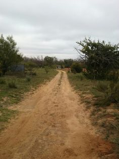 Standing at gate entrance looking down driveway to the house
