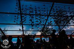 Paper birds decorating ceiling, David Pullum Photographers - Abigail and Robert