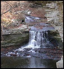 The Falls at McCormick's Creek State Park, Indiana. One of very few happy kid memories. Would love to have my ashes left there