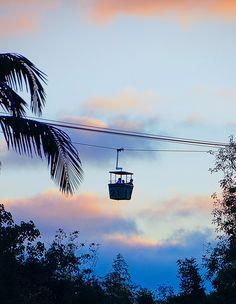 San Diego zoo by MadnessTakesItsToll, via Flickr