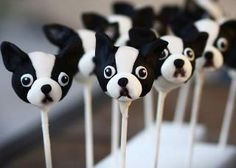 Northeast Boston Terrier Rescue: Boston Terrier Cake Pops and Cupcakes
