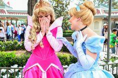 Aurora and Cinderella. Photo by #EverythingDisney