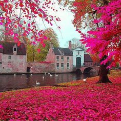 Bruges with photoshop