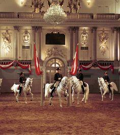Photo : Vienne - L'école espagnole d'équitation