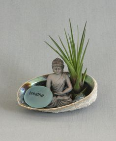 """Ocean inspired terrarium with abalone shell holder, Buddha figurine, and an aqua colored """"Breathe"""" rock. Air plant included."""