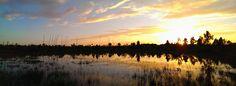 Fort Myers, FL sunset