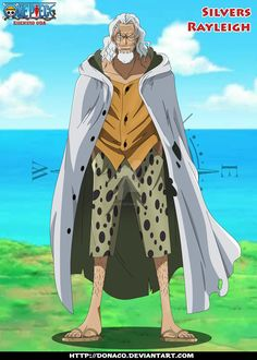 """""""Iron Mace"""" Alvida (金棒のアルビダ Kanabō no Arubida?) was captain of the Alvida Pirates and the first antagonist encountered by Luffy in the anime pr..."""