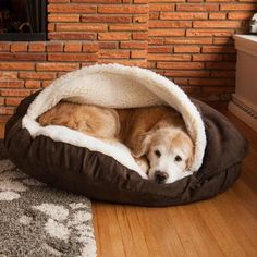 Luxury Cozy Cave Dog Beds - Beds, Blankets, and Furniture- Bed Posh Puppy BoutiqueGet your pooch to stop climbing on the furniture once and for all by purchasing the dog cave bed. This oversized and insanely comfortable bed completely envelops Rex so Cozy Cave Dog Bed, Dog Cave, Cozy Bed, Chien Jack Russel, Dog Car Seats, Pet Beds, Large Dogs, Dogs And Puppies, Pet Supplies