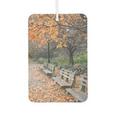 Autumn Leaves Riverside Park New York City NYC Air Freshener - photography picture cyo special diy