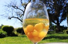 How to get drunk off of gummy bears and oranges. So cool!