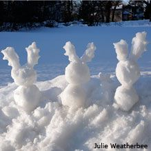 For a fun winter art activity (sculpture!): How to build animals out of snow