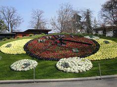Flower Clock, Geneva, Switzerland 2011 Photo by Liane Fried