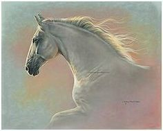 """""""Radiance"""" white horse by Lesley Harrison"""