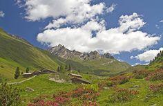 https://appennino-trekking.blogspot.it/2016/07/imparare-larte-del-camminare-e-prendere.html