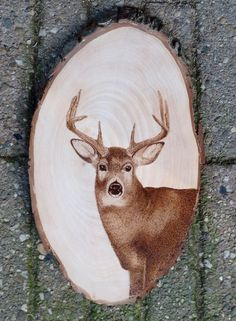By Lies Broekman Pyrography, woodburning  L.B