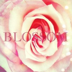"""BLOSSOM - """"And the day came when the risk to remain tight in a bud was more painful than the risk it took to blossom.""""-A.N."""