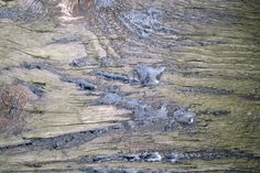 OUTSIDE THE FRAY – 7 Grungy Railroad Tie Textures
