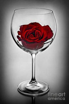 Red Rose Flower, Flower Art, Red Roses, Birthday Room Decorations, Wine Glass, Glass Art, Glass Photography, Guns And Roses, Glass Centerpieces