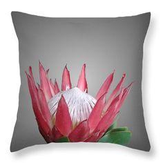 Botanical themed homeware  #pillows   #homedecor  #homedecorideas   #protea  #cushions  #flowers  #home  #botanical