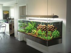 Aquarium mit Hängevorrichtung.