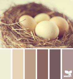 Nested tones colors for living room