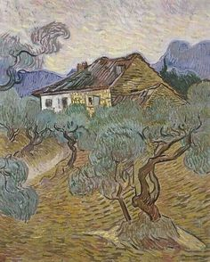 White cottage among the olive trees Van Gogh